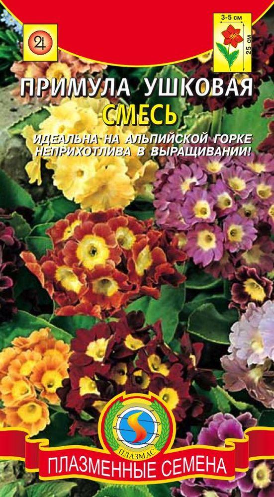 Примула розелла от посева до цветения