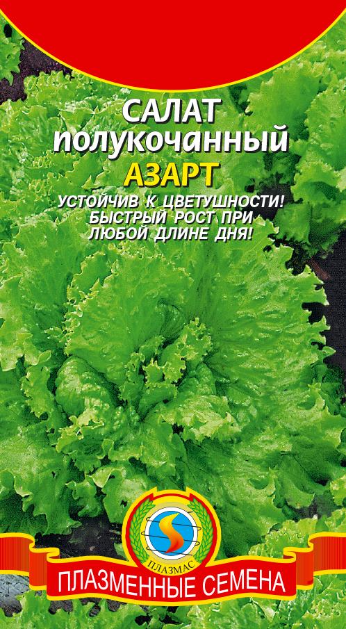 салат семена азарт